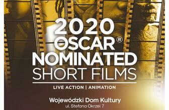 Najlepsze filmy krótkometrażowe w WDK - rozrywka