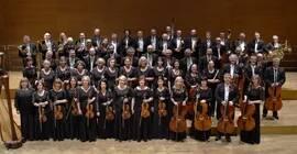 Koncert symfoniczny: Brahms