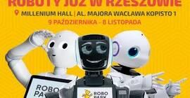 ROBOPARK Międzynarodowa Wystawa Robotów