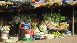 Rzeszowskie Spotkania z Podróżami: Autostopem i pieszo przez Gwinee Bissau i Konakry