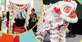 Filmowy Poranek dla Dzieci: Pokaz tańca i walki Chińskiego Smoka